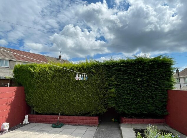Landscaping cardiff