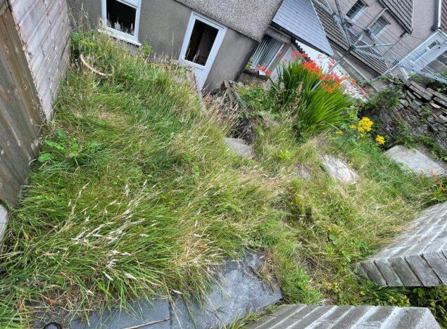 overgrown garden clearance cardiff